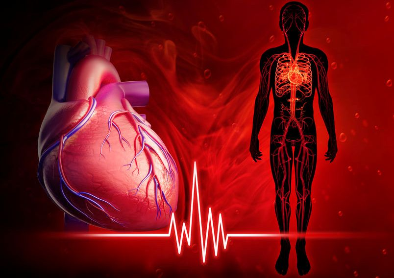 How To Improve Blood Circulation With Least Effort